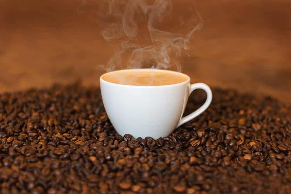 chien-boit-cafe