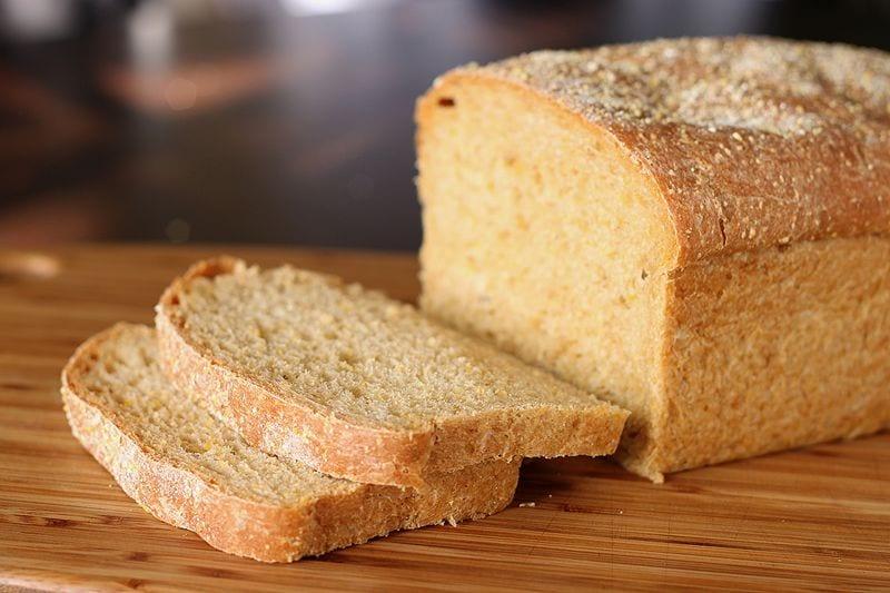 chien-mange-pain