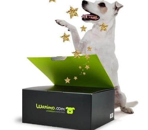 wanibox chien