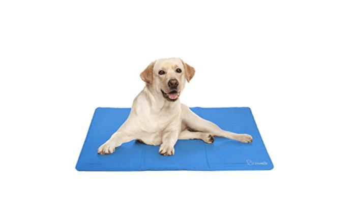 tapis rafraichissant chien