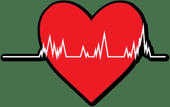 arret cardiaque chien