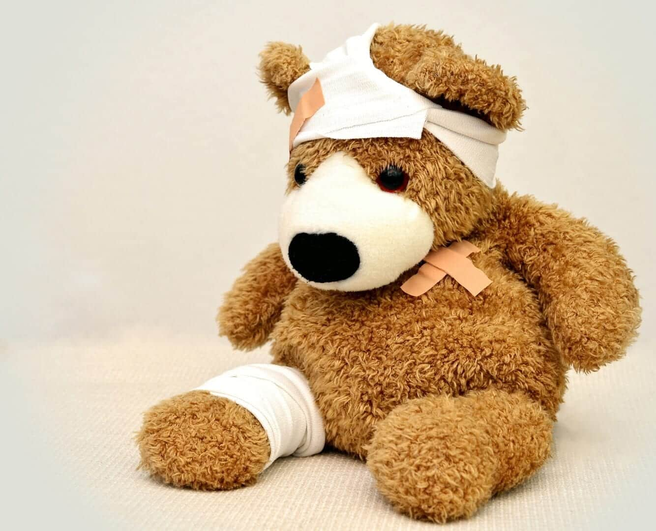 bandage chien