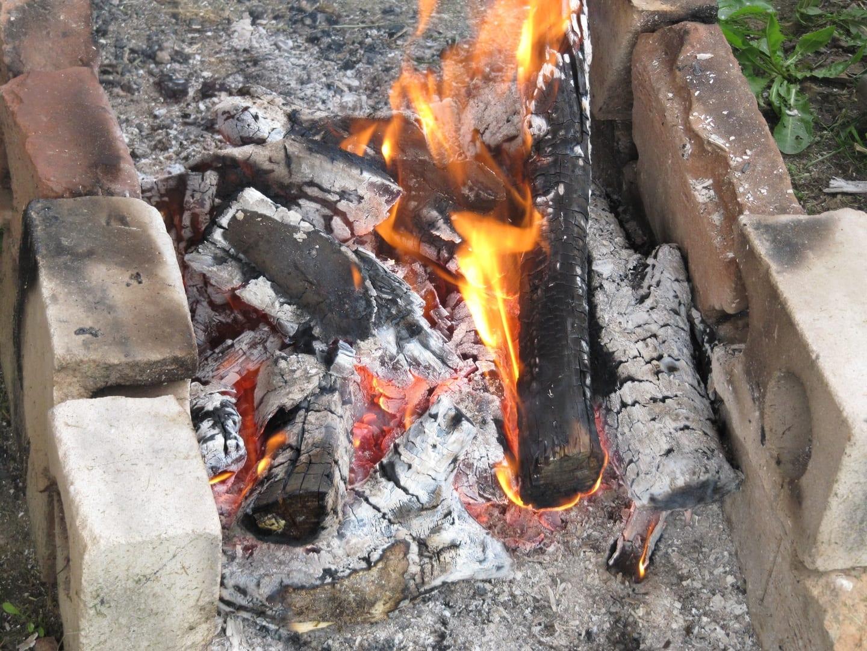 brulure chien feu