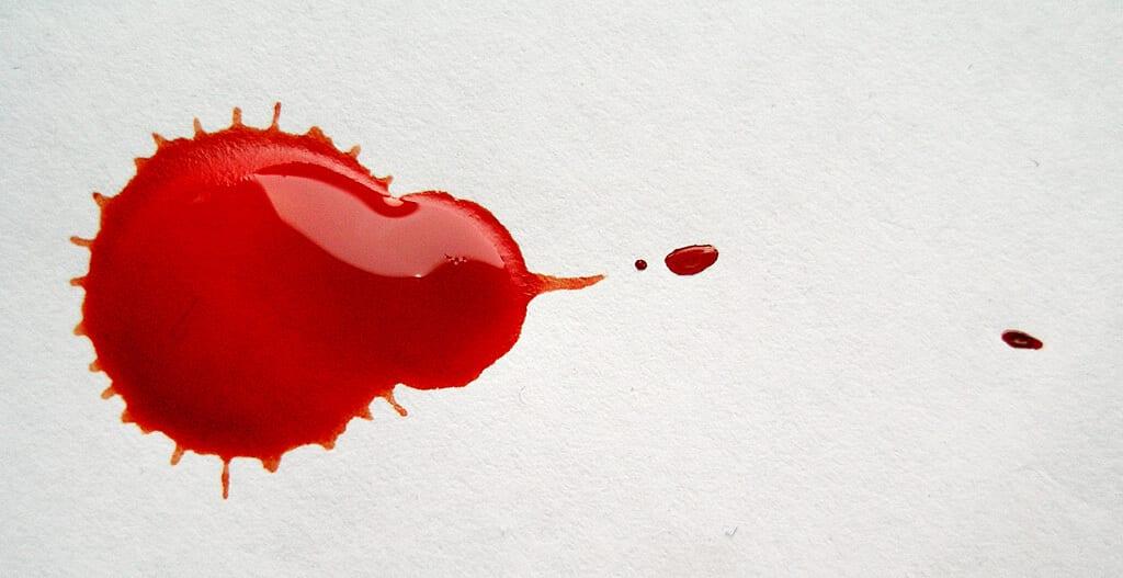 sang de chien