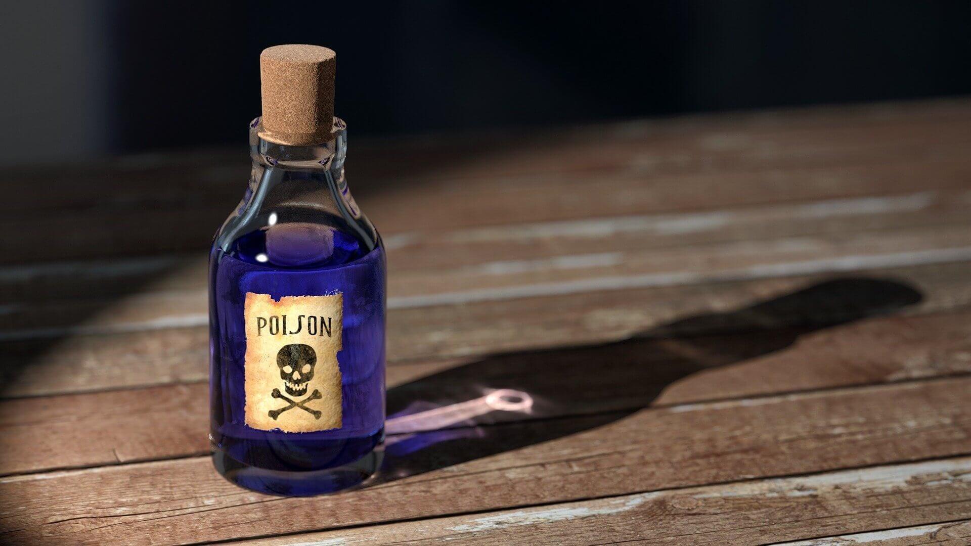 poison chien