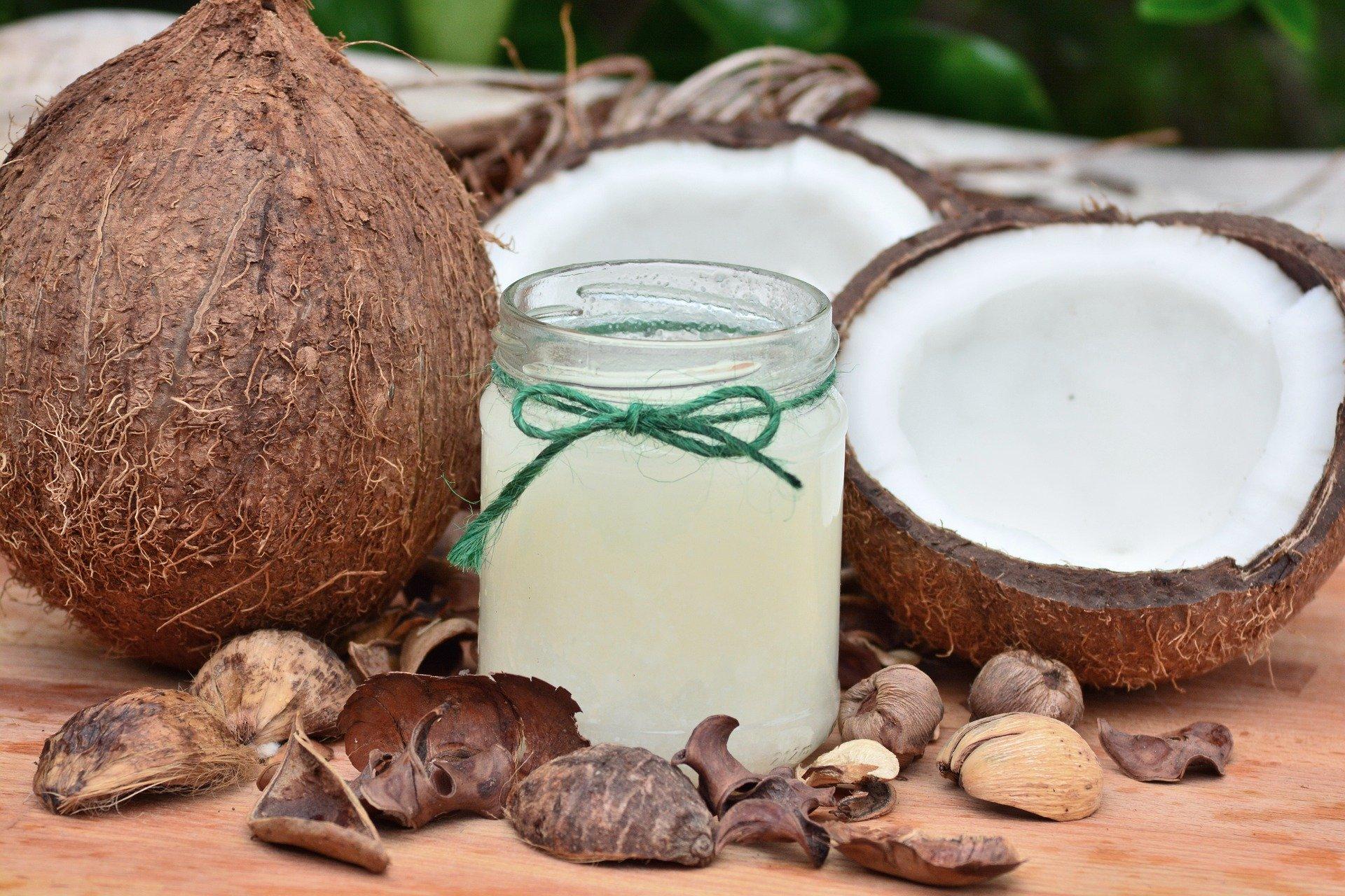huile de coco pour chien