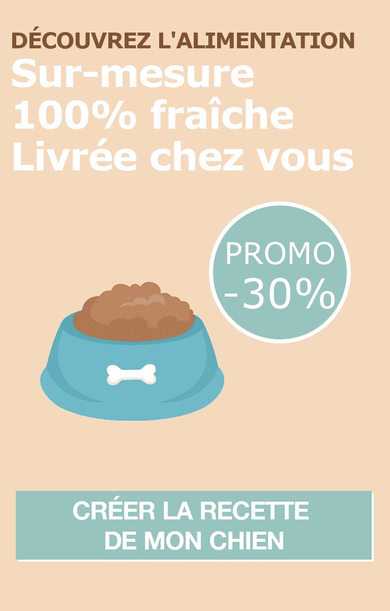 Bannière-Dog-Chef-3