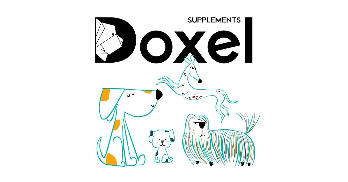 Doxel chien